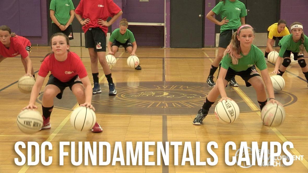 sdc-fundamentals